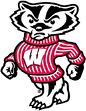 wi_badger